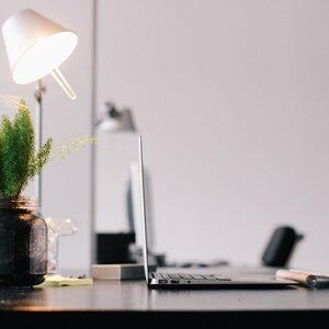 Arbeitsplatz mit Pflanze Laptop und Lampe